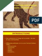 Animal Perception Multiculturelle