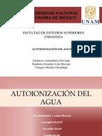 Autoinizacion del agua.pptx