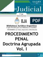 59 Procedimiento Penal. Doctrina Agrupada - Biblioteca Juridica Argentina.pdf