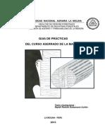 GUIA DE PRÁCTICAS DE ASERRADO - 2013.pdf