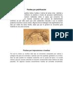 Fósiles por petrificación.docx