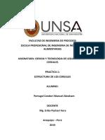 Practica 1 Manuel Portugal.docx