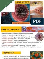 Virus de La Hepatitis y de La Rabia Cerna Salas Milagros.