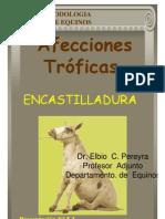 4_ENCASTILLADURA