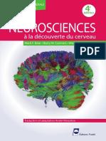 NEUROSCIENCES à La Découverte Du Cerveau - Mark F. Bear , Barry W. Connors , Michael a. Paradiso 4ème Édition
