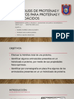 Hidrolisis de Proteínas
