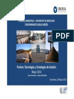 Purines, Tecnologías y Estrategias de Gestión