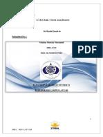 Mba 5th Ztbl Internship Report