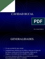 CAVIDAD_BUCAL