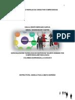 Manual de Funciones de Perfiles de Cargos