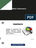 analicis financiero