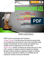 opex-140831172423-phpapp01