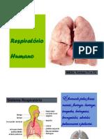 sistema.respiratorio (1)