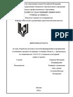 diplom_sidorova_e.v._skd-09.3_.pdf