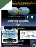 Diseminasi Budidaya Rumput Laut