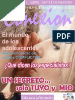 Revista conexion