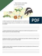 Repaso Ecosistemas y Cadenas Tróficas