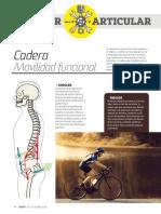 Cadera - Movilidad Articular