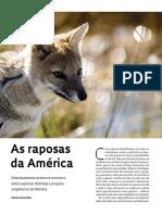 050-051_Raposas_247