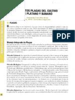 insectos plaga del cultivo del banano.pdf