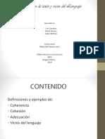 Exposicion Pds Texto y Vicios Del Lenguaje (1)