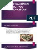 PLANIFICACION DE CULTIVOS HIDROPONICOS