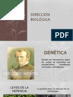 DIRECCIÓN BIOLOGICA