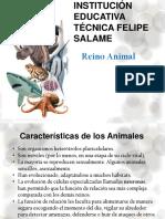 REINO ANIMAL 2016.pptx