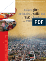 PE_PILOTO