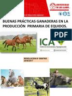 BPG EN DIFERENTES ESPECIES.pptx