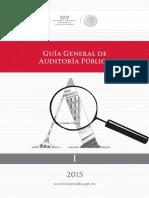 01 Guía Gral Auditoria Publica