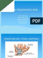 TUNEL DEL CARPO-convertido (1).pdf