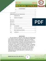 HIDROGRAMAS DE CRECIDAS.docx