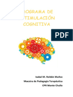 Programa Cognitivo