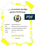 Tacticas Operativas TA TERMINADO.docx