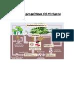 ciclo biogénicos