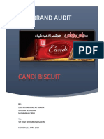 CANDI-Brand Audit Report