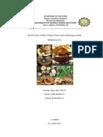 Diversity of Macro Fungi Found at Mt. Kitanglad,Bukidnon, Philippines