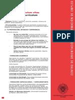 Plantilla CV.pdf