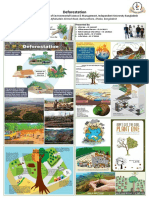 Deforestation Poster