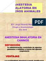 Anestesia Inhalatoria en pequeños Animales.