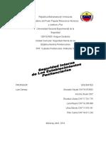 Copia de Trabajo de Seguridad Interna.doc Neyda