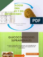 FARMACOLOGÍA DE SISTEMA ENDOCRINO Y DEL METABOLISMO.pptx