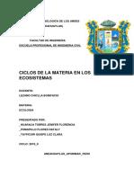 CICLOS DE LA MATERIA N10.docx