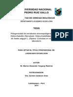 6.Patogenicidad de Nemátodos Entomopatógenos Del Género