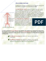 parties_systeme_nerveux.pdf