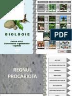 2017-botanica-ii.ppsx