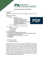 proyecto upa.docx