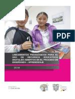 lineamientos_reda.pdf