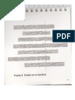 Woodcock Muñoz Manual para aplicar Fluidez en escritura